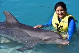 swim with dolphin cozumel and jeep riders