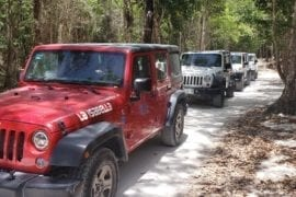 Cozumel Jeep Adventure to Jade Cavern and Cenote with Lunch and snorkel- Cozumel tours excursions